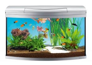 Tetra AquaArt Evolution Line Aquarium