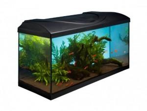 Aquarium Komplettset 80x35x40
