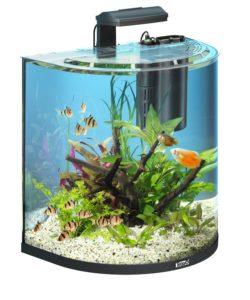 aquarium vergleich